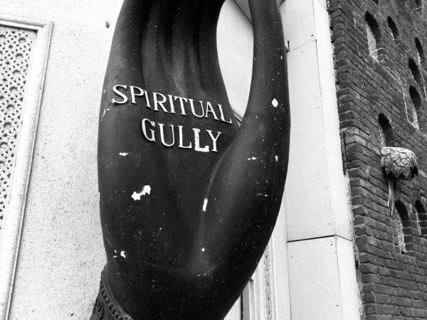 <span>Spiritual Gully</span><i>→</i>
